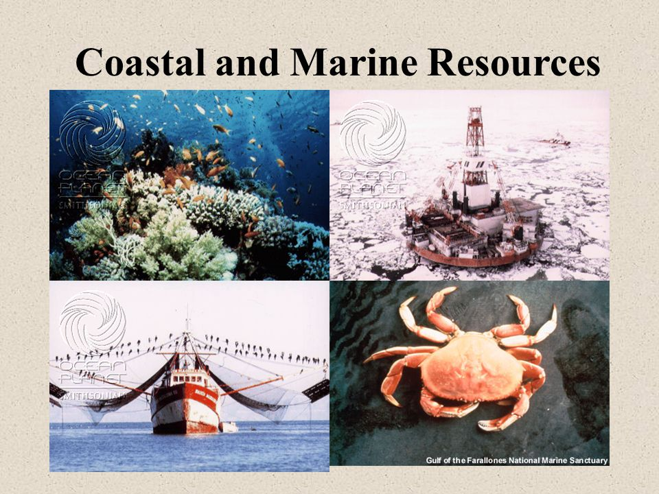 Main Lecture Topics Economically important living and non-living resources International legal framework that governs utilization of marine resources Coastal resource management Case studies