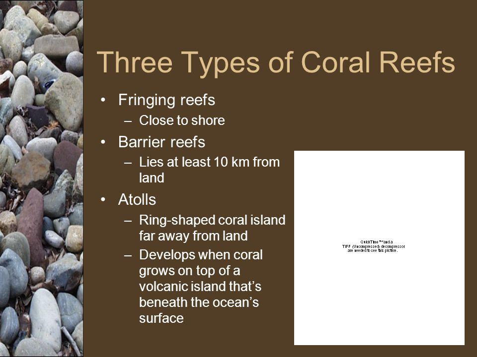 Limestone Deposits A coral reef is organic limestone.