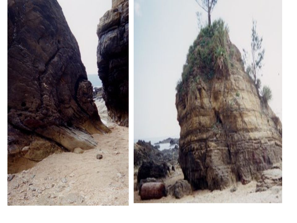 SEDAKASHORE'LAYER ・ KAYOU LAYER The surface of the rock is curved by waves.