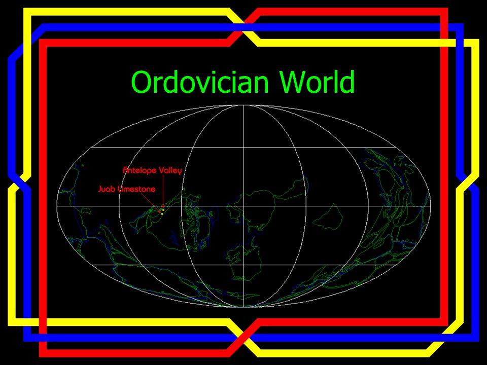 Ordovician World