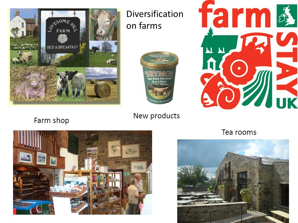 Diversification on farms Farm shop Tea rooms New products