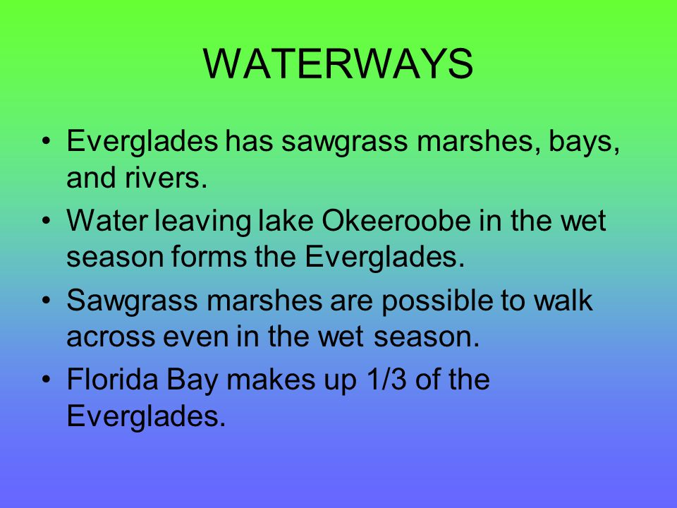 WATERWAYS Everglades has sawgrass marshes, bays, and rivers.