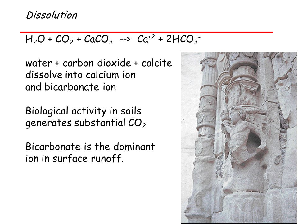 Dissolution H 2 O + CO 2 + CaCO 3 --> Ca +2 + 2HCO 3 - water + carbon dioxide + calcite dissolve into calcium ion and bicarbonate ion Biological activity in soils generates substantial CO 2 Bicarbonate is the dominant ion in surface runoff.