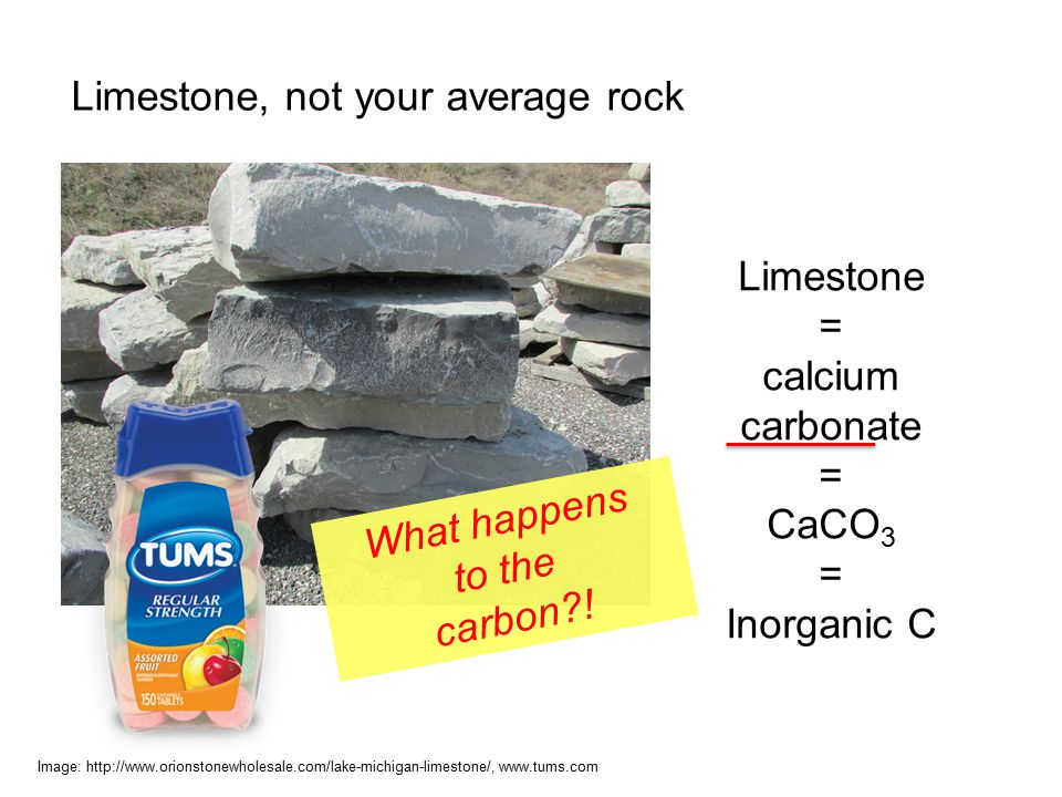 Limestone, not your average rock Image: http://www.orionstonewholesale.com/lake-michigan-limestone/, www.tums.com Limestone = calcium carbonate = CaCO