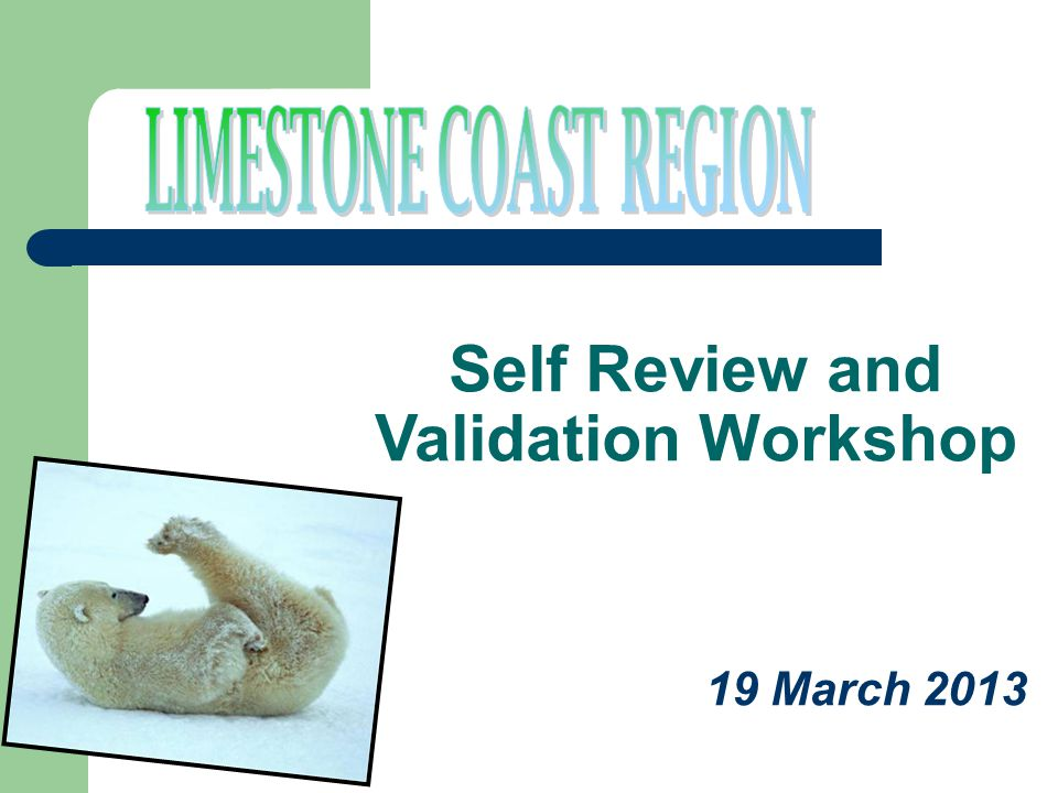 19 March 2013 Self Review and Validation Workshop