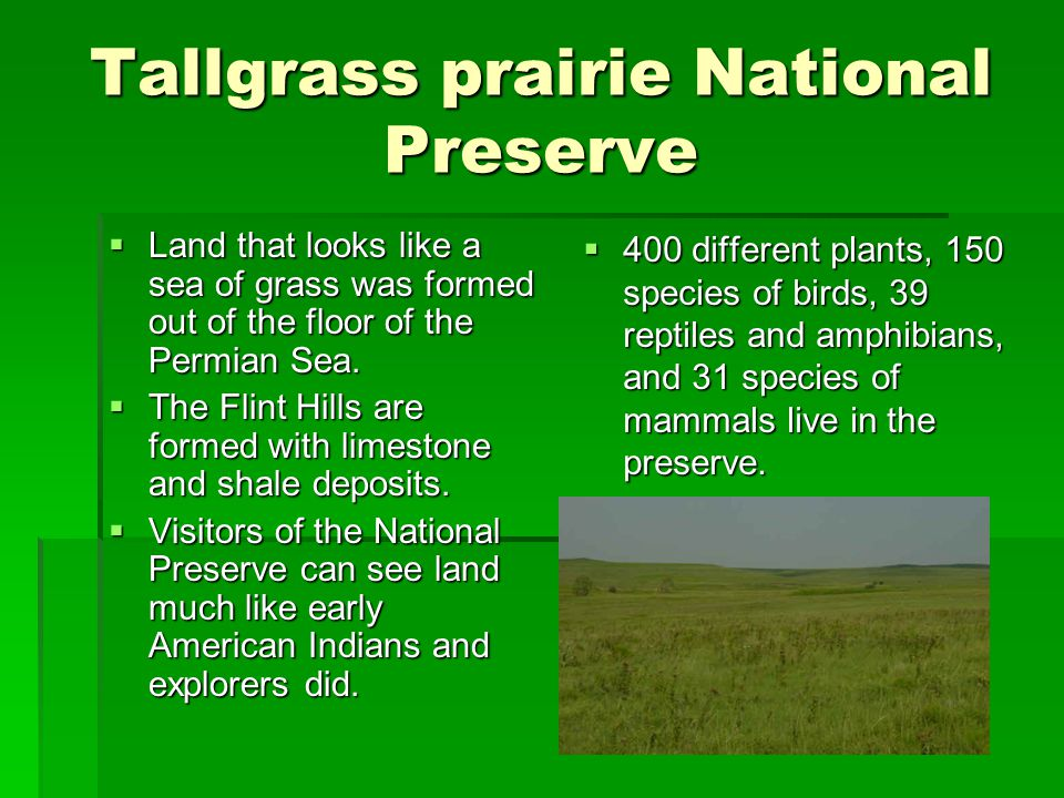 Tallgrass prairie National Preserve  Land that looks like a sea of grass was formed out of the floor of the Permian Sea.  The Flint Hills are formed