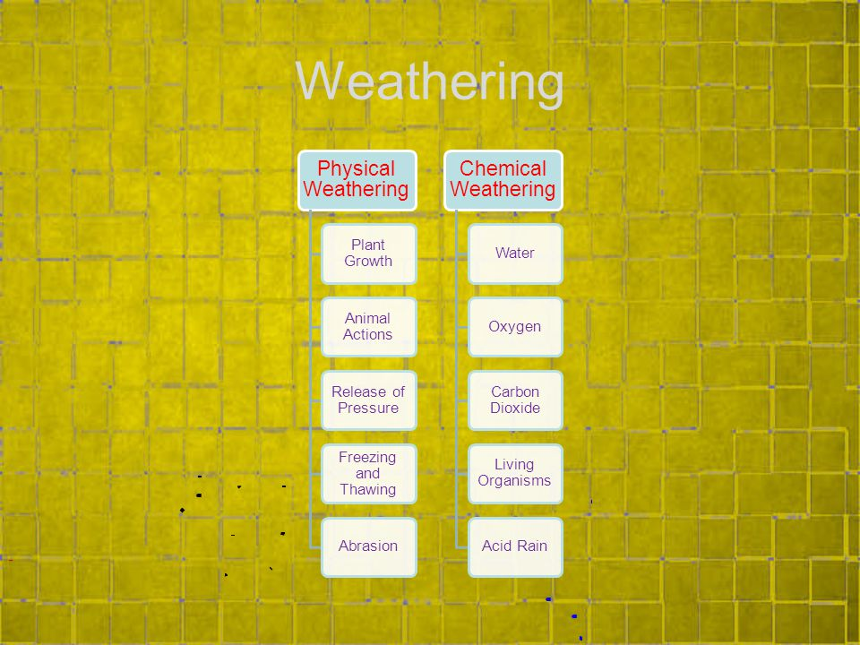 Weathering Physical Weathering Plant Growth Animal Actions Release of Pressure Freezing and Thawing Abrasion Chemical Weathering WaterOxygen Carbon Dioxide Living Organisms Acid Rain