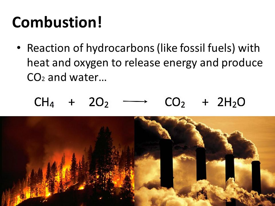 Combustion! Reaction of hydrocarbons (like fossil fuels) with heat and oxygen to release energy and produce CO 2 and water…