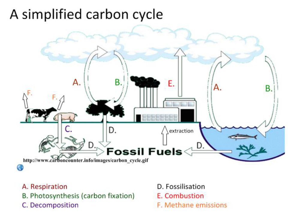 It's not just Carbon Dioxide… Methane.