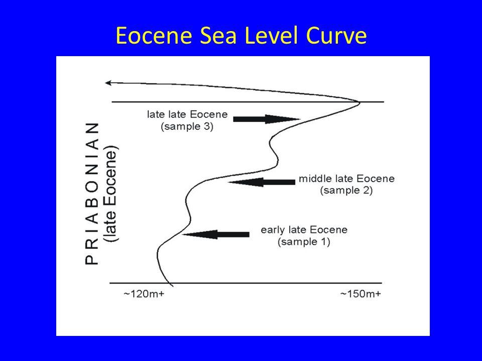 Eocene Sea Level Curve
