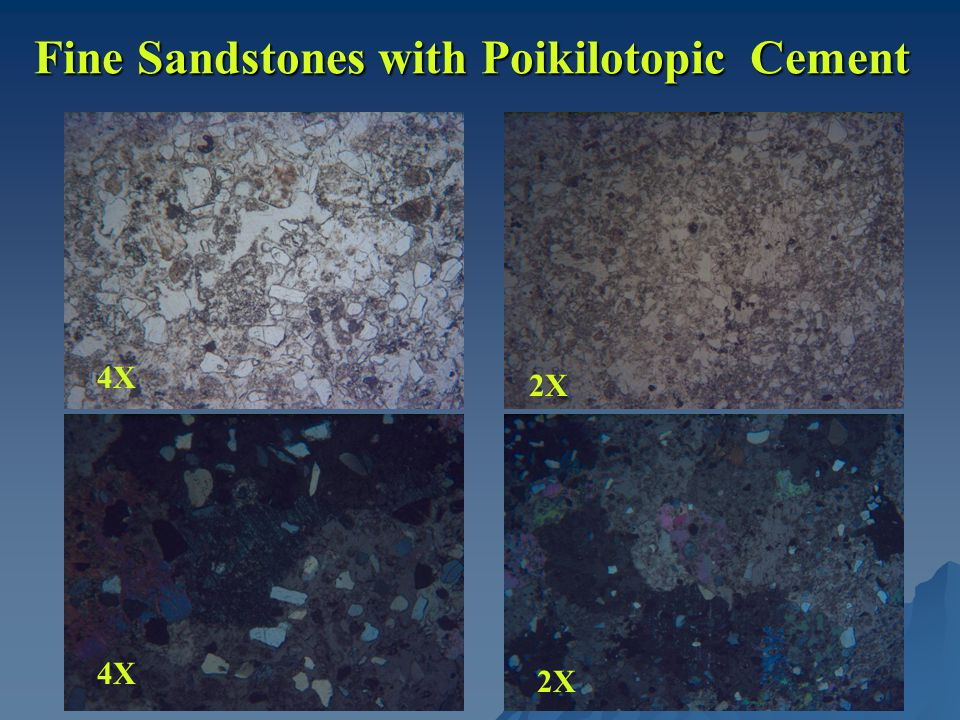 Fine Sandstones with Poikilotopic Cement 4X 2X