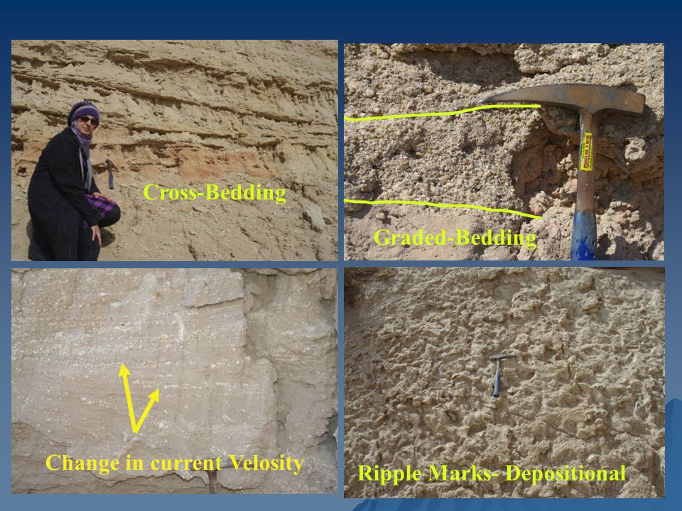 Cross-Bedding Graded-Bedding Change in current Velosity Ripple Marks- Depositional