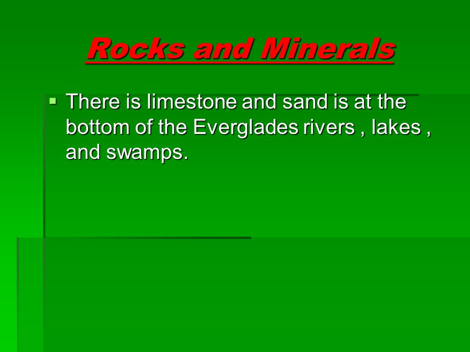 Rock and minerals details  Limestone  Limestone is the most found mineral in the Everglades.