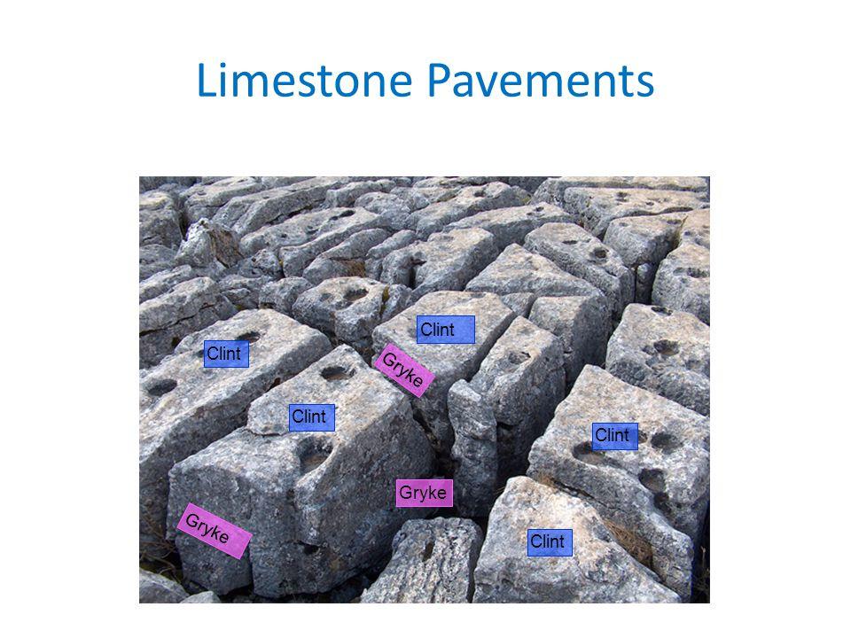 Limestone Pavements Clint Gryke