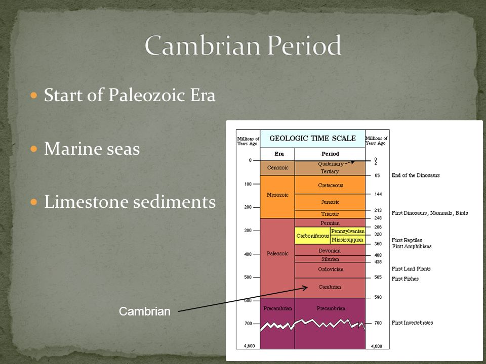 Start of Paleozoic Era Marine seas Limestone sediments Cambrian