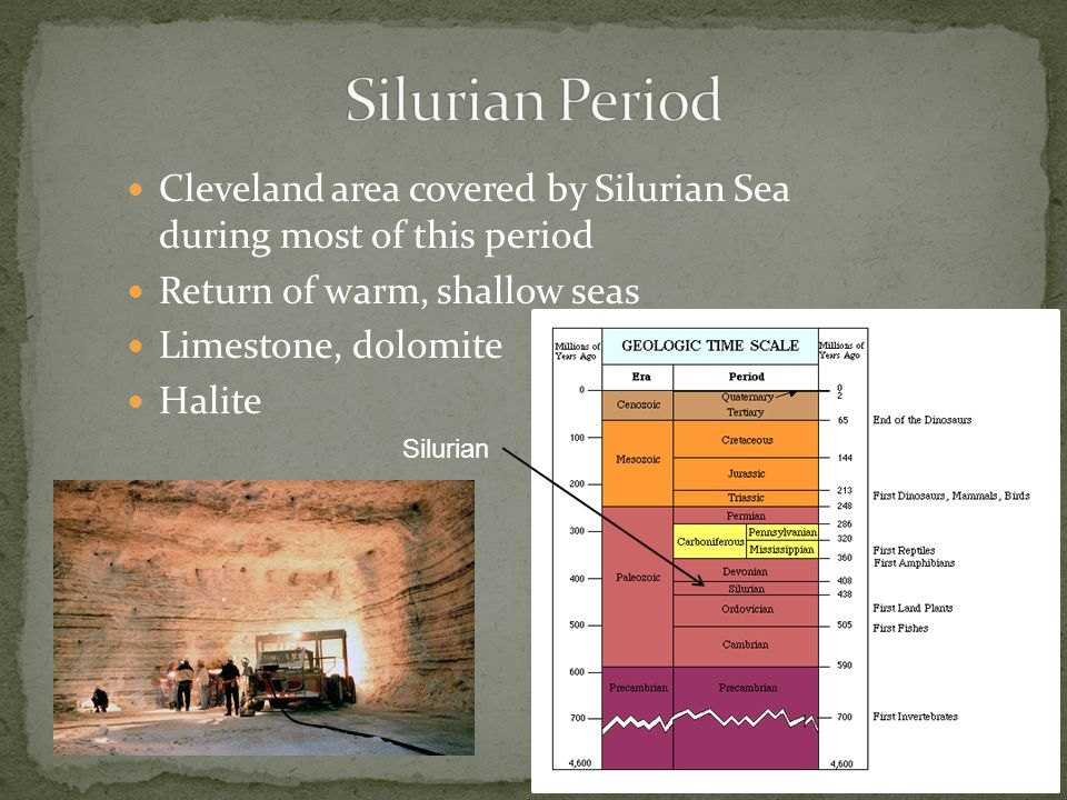 Cleveland area covered by Silurian Sea during most of this period Return of warm, shallow seas Limestone, dolomite Halite Silurian
