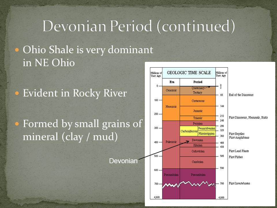 Ohio Shale is very dominant in NE Ohio Evident in Rocky River Formed by small grains of mineral (clay / mud) Devonian