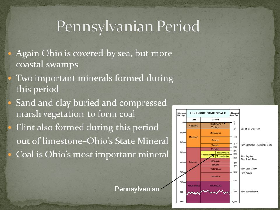 Again Ohio is covered by sea, but more coastal swamps Two important minerals formed during this period Sand and clay buried and compressed marsh vegetation to form coal Flint also formed during this period out of limestone–Ohio's State Mineral Coal is Ohio's most important mineral Pennsylvanian