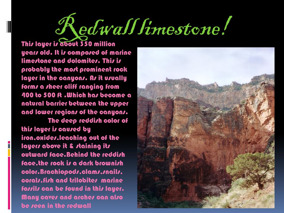 Why is the Grand Canyon important.
