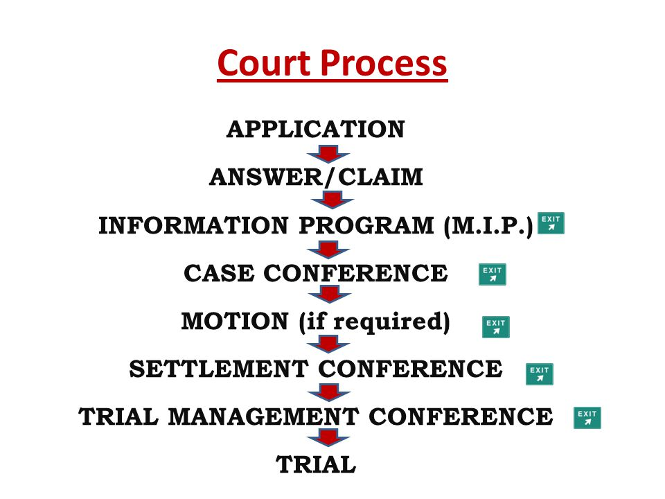Court Process APPLICATION ANSWER/CLAIM INFORMATION PROGRAM (M.I.P.) CASE CONFERENCE MOTION (if required) SETTLEMENT CONFERENCE TRIAL MANAGEMENT CONFER
