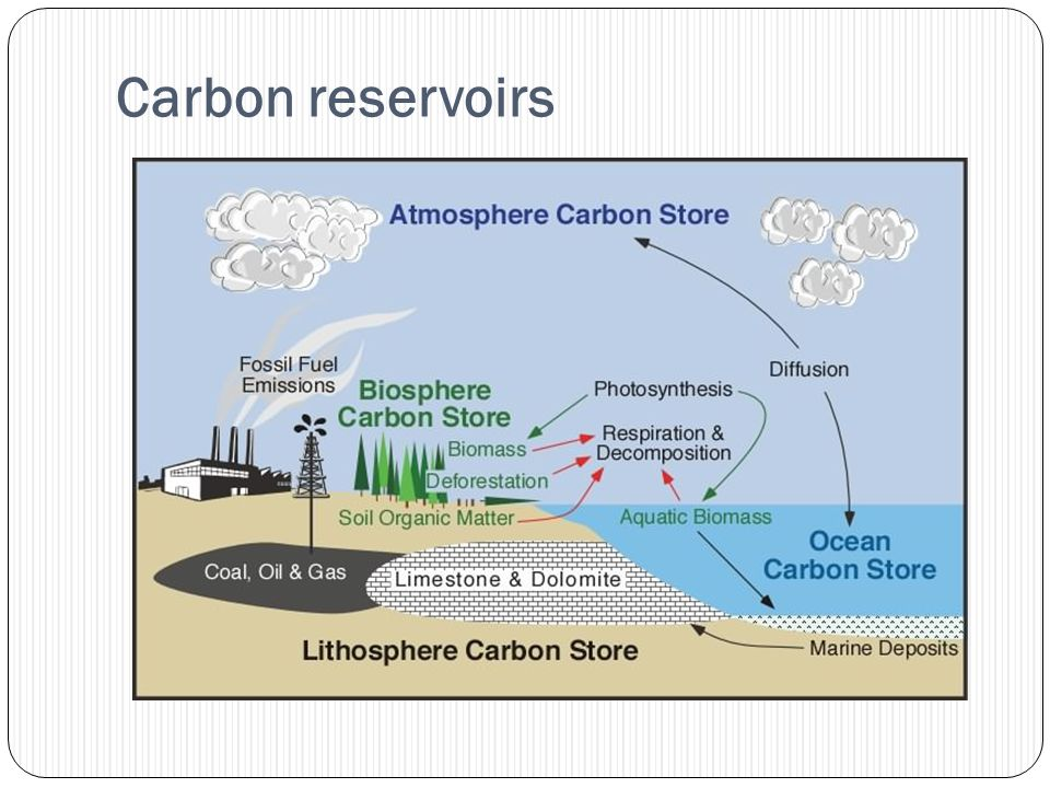 Carbon reservoirs