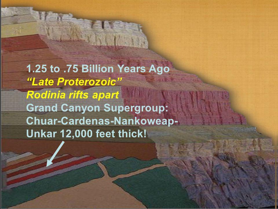 1.25 to.75 Billion Years Ago Late Proterozoic Rodinia rifts apart Grand Canyon Supergroup: Chuar-Cardenas-Nankoweap- Unkar 12,000 feet thick!