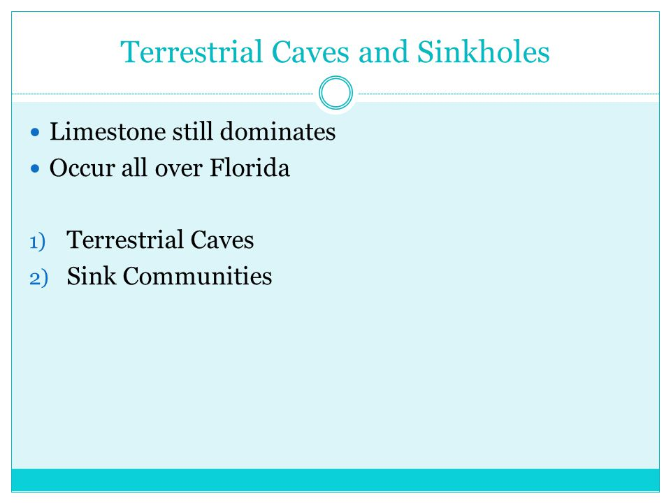 Terrestrial Caves and Sinkholes Limestone still dominates Occur all over Florida 1) Terrestrial Caves 2) Sink Communities