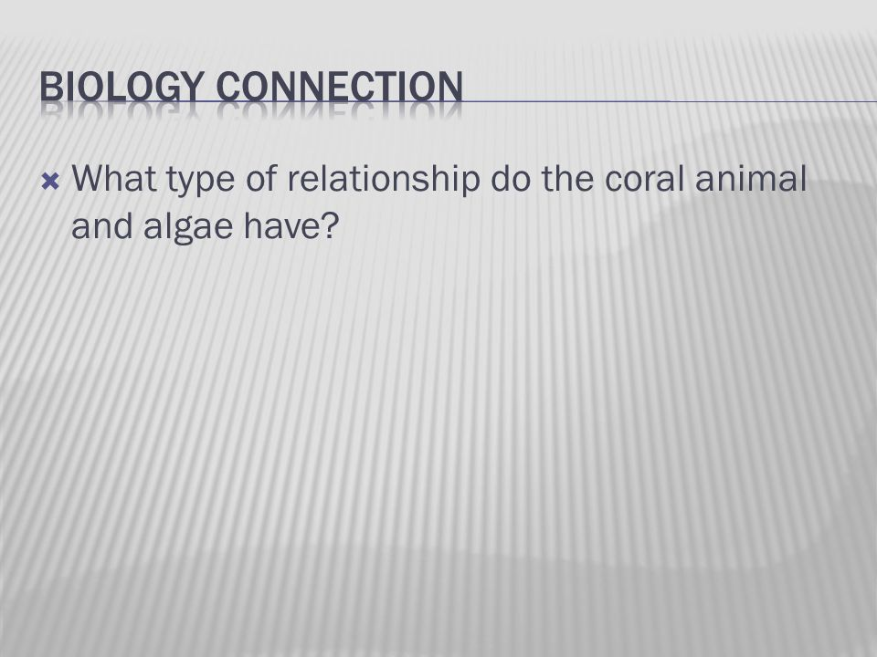  What type of relationship do the coral animal and algae have