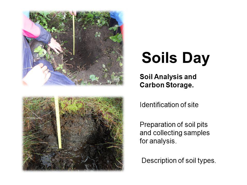 Soils Day Soil Analysis and Carbon Storage.