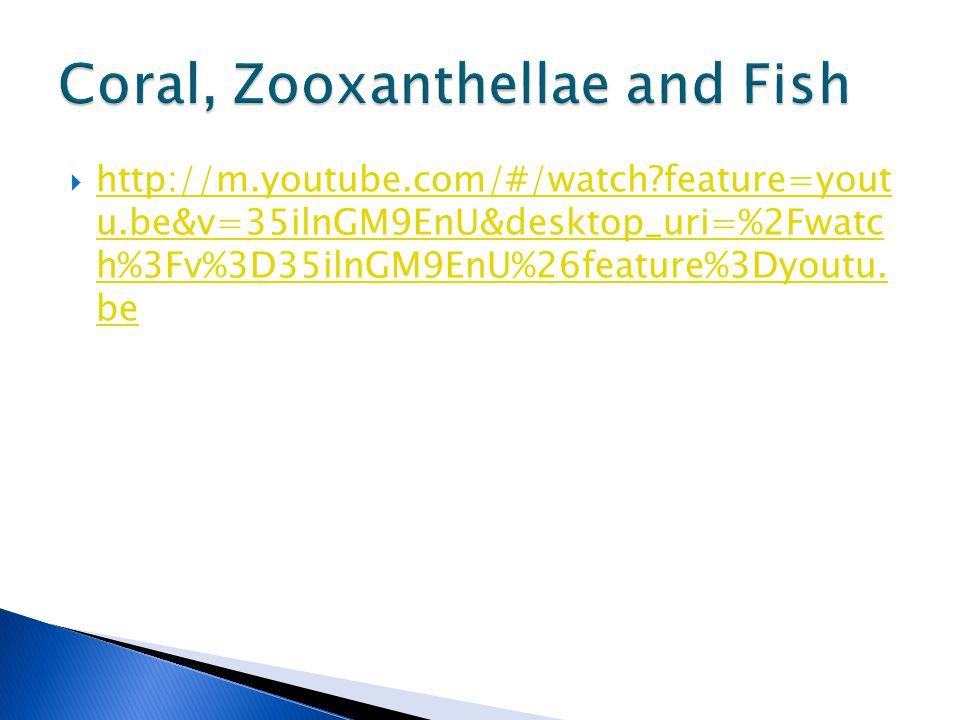  http://m.youtube.com/#/watch feature=yout u.be&v=35ilnGM9EnU&desktop_uri=%2Fwatc h%3Fv%3D35ilnGM9EnU%26feature%3Dyoutu.