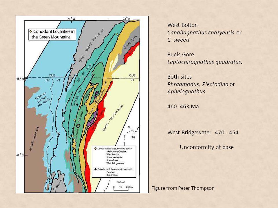 West Bolton Cahabagnathus chazyensis or C. sweeti Buels Gore Leptochirognathus quadratus. Both sites Phragmodus, Plectodina or Aphelognathus 460 -463