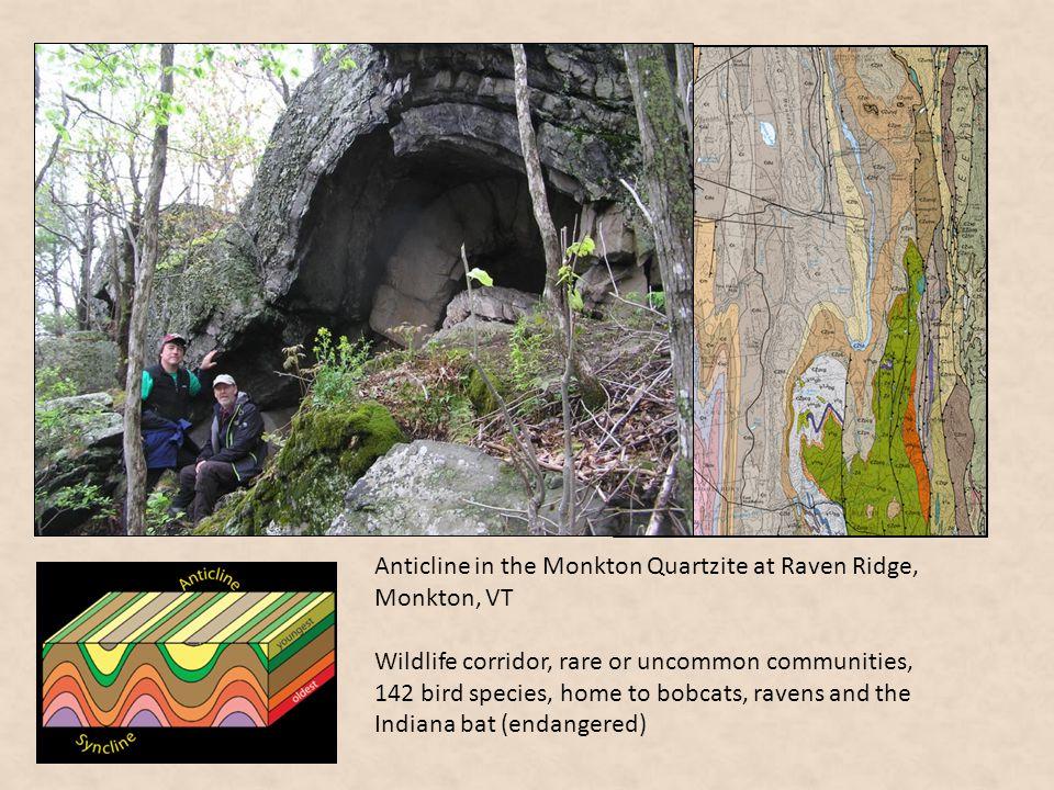 Anticline in the Monkton Quartzite at Raven Ridge, Monkton, VT Wildlife corridor, rare or uncommon communities, 142 bird species, home to bobcats, rav
