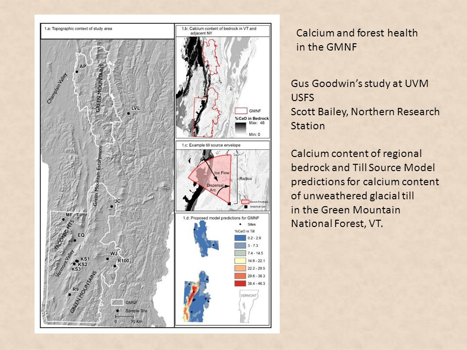 Gus Goodwin's study at UVM USFS Scott Bailey, Northern Research Station Calcium content of regional bedrock and Till Source Model predictions for calc