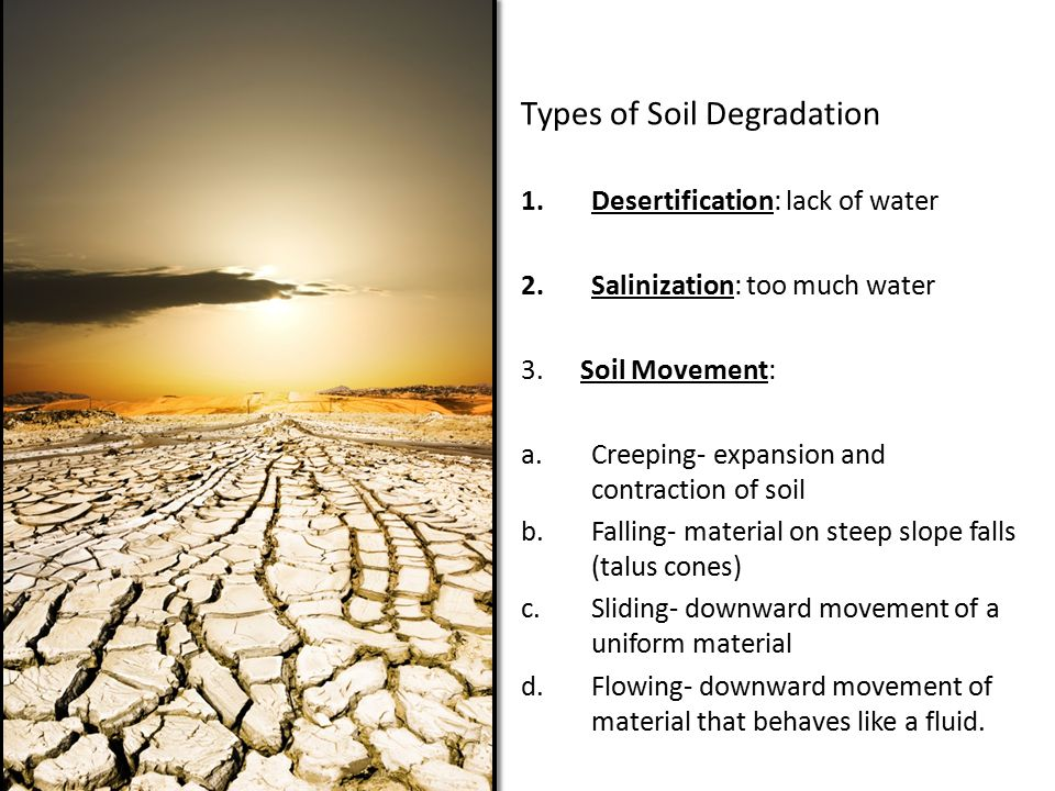 Types of Soil Degradation 1.Desertification: lack of water 2.Salinization: too much water 3.