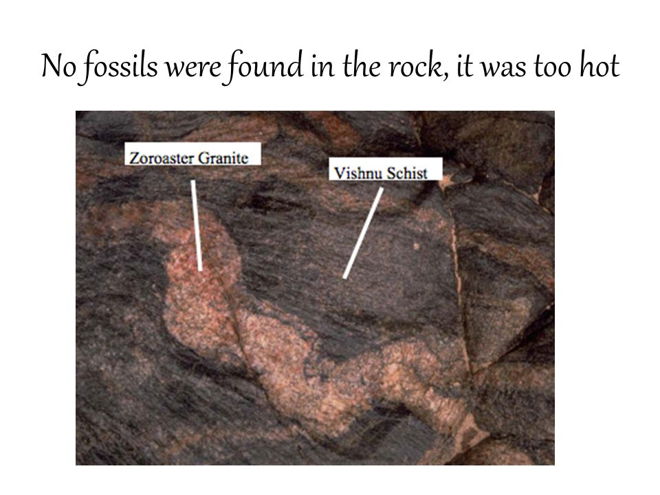 No fossils were found in the rock, it was too hot
