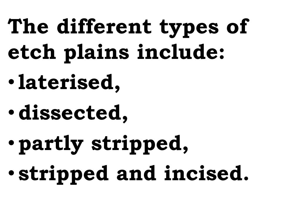 The different types of etch plains include: laterised, dissected, partly stripped, stripped and incised.