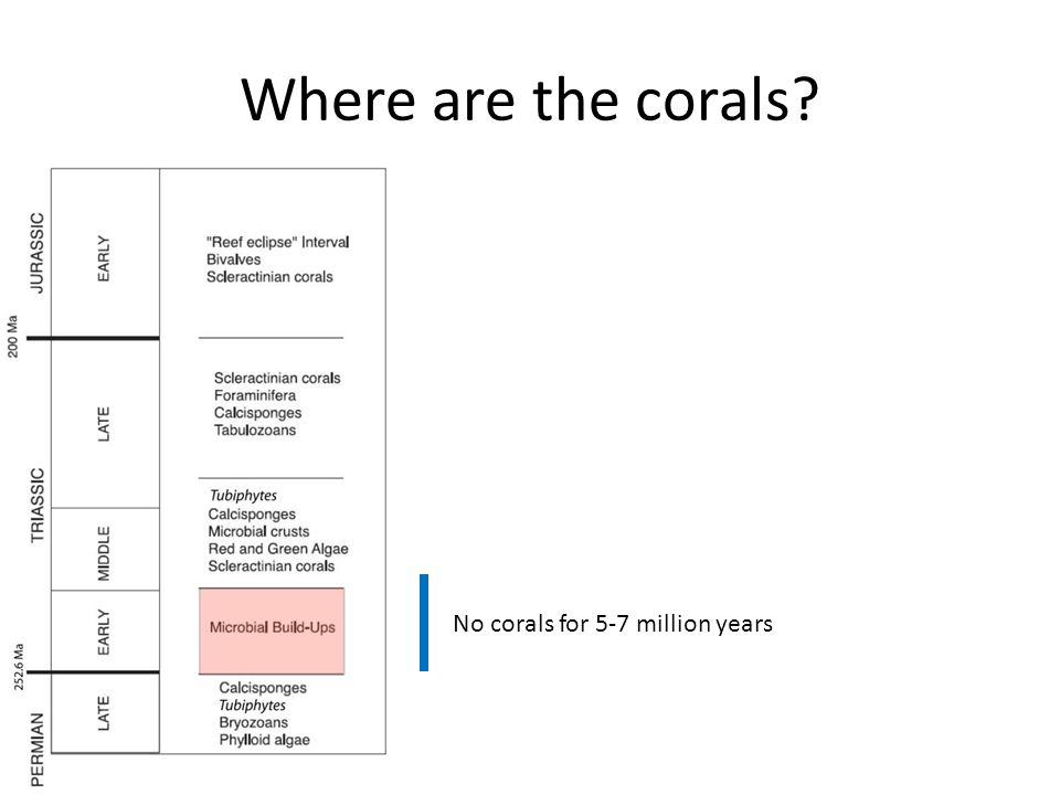 Where are the corals No corals for 5-7 million years