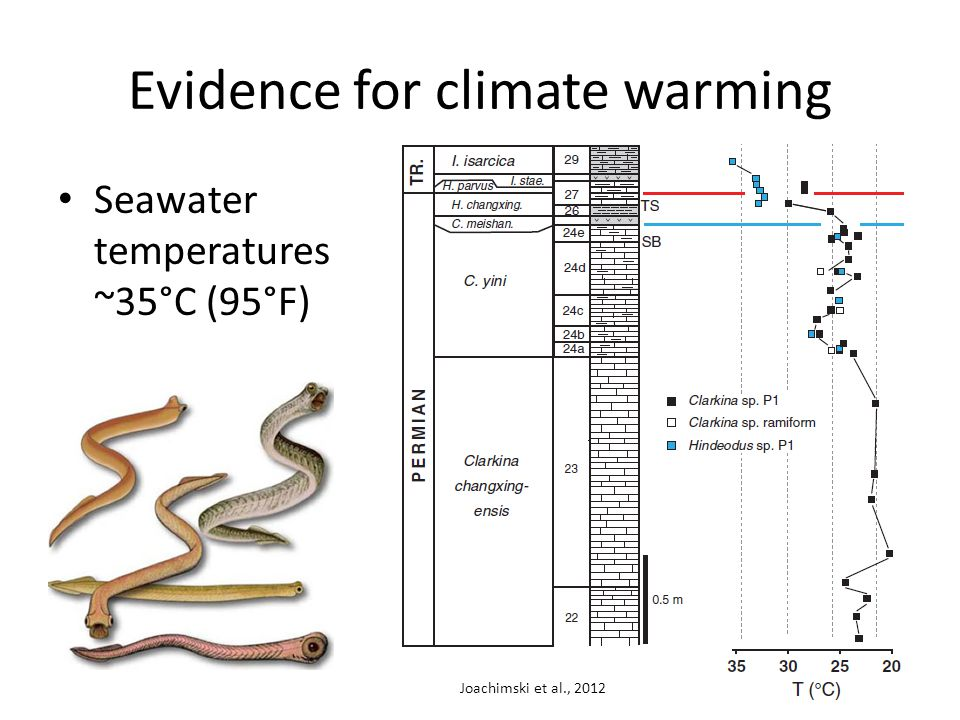 Seawater temperatures ~35°C (95°F) Joachimski et al., 2012