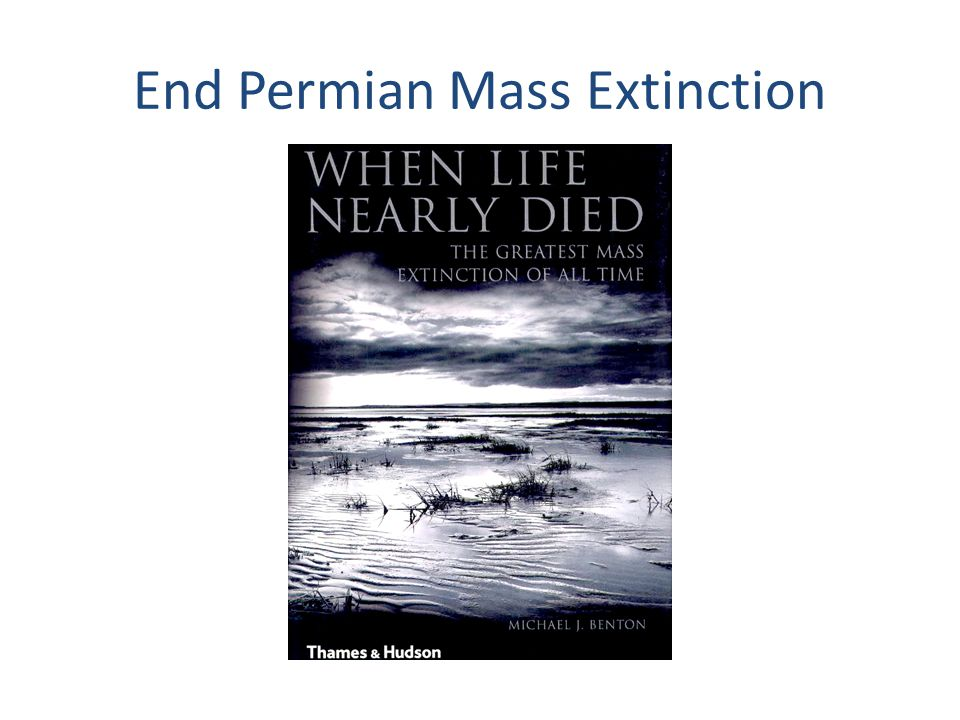 The Big 5 Mass Extinctions (modified from Alroy, 2010) End Permian End Triassic End Cretaceous End Ordovician Late Devonian PaleozoicMesozoic Cenozoic