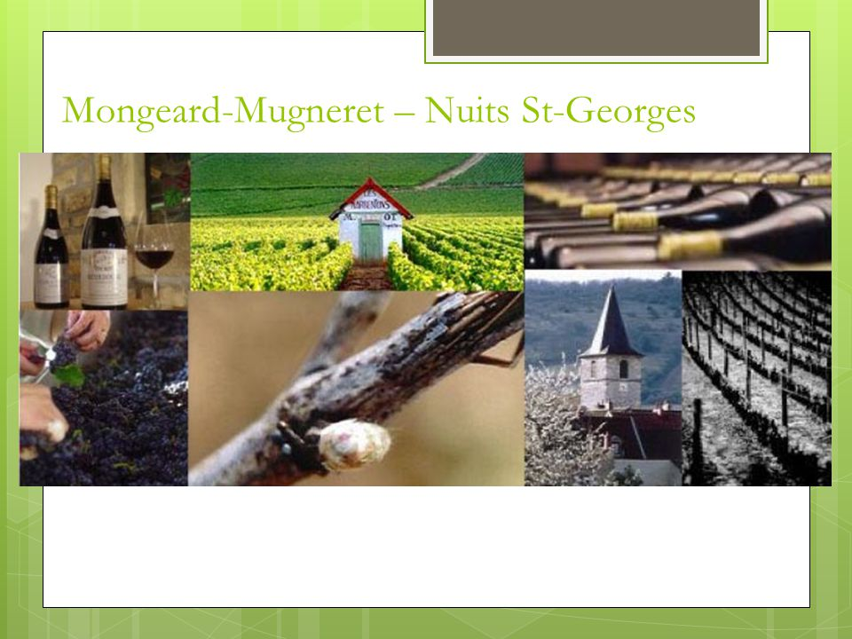 Mongeard-Mugneret – Nuits St-Georges