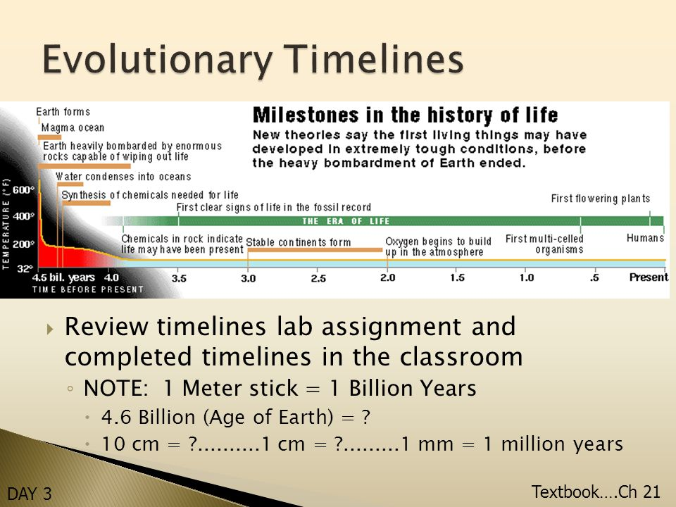  Review timelines lab assignment and completed timelines in the classroom ◦ NOTE: 1 Meter stick = 1 Billion Years  4.6 Billion (Age of Earth) = .