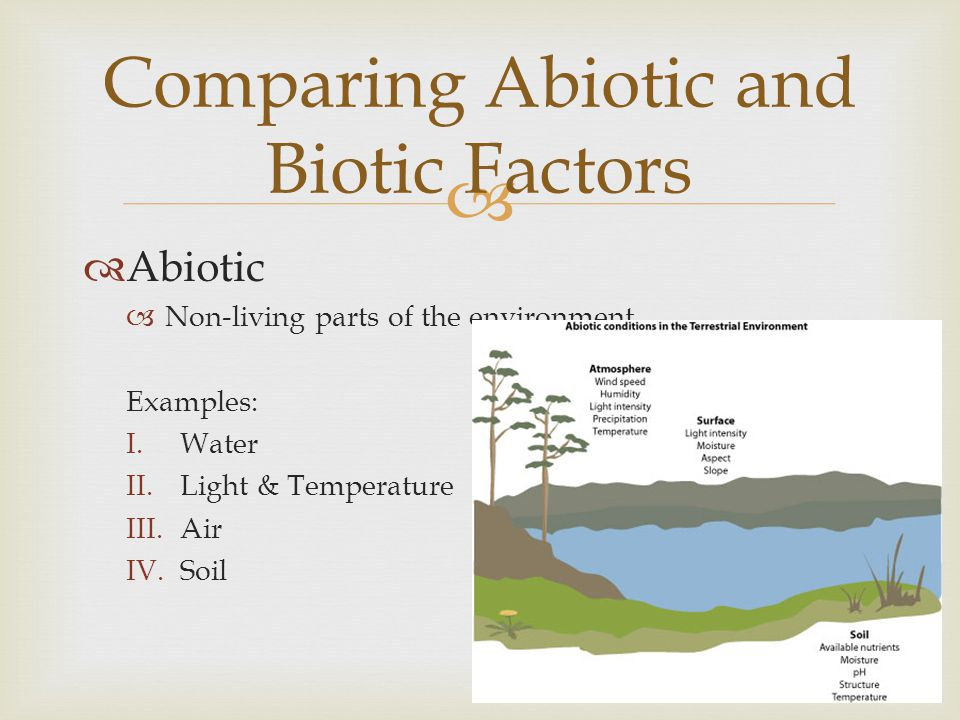   Biotic Factors  Living or once-living organisms in the environment Examples: I.Levels or organization II.Population III.Communities IV.Ecosystems V.Biomes VI.The Biosphere Comparing Abiotic and Biotic Factors