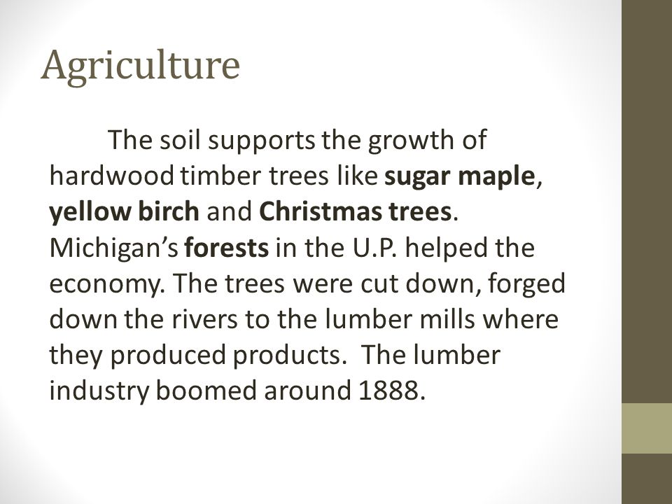 Agriculture The soil supports the growth of hardwood timber trees like sugar maple, yellow birch and Christmas trees.