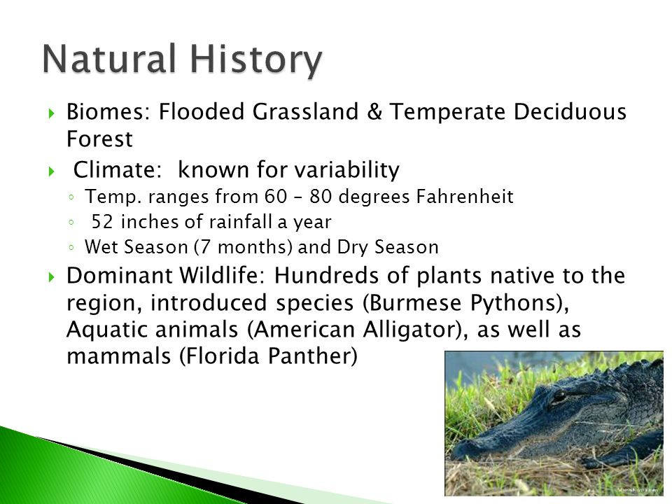  Biomes: Flooded Grassland & Temperate Deciduous Forest  Climate: known for variability ◦ Temp.