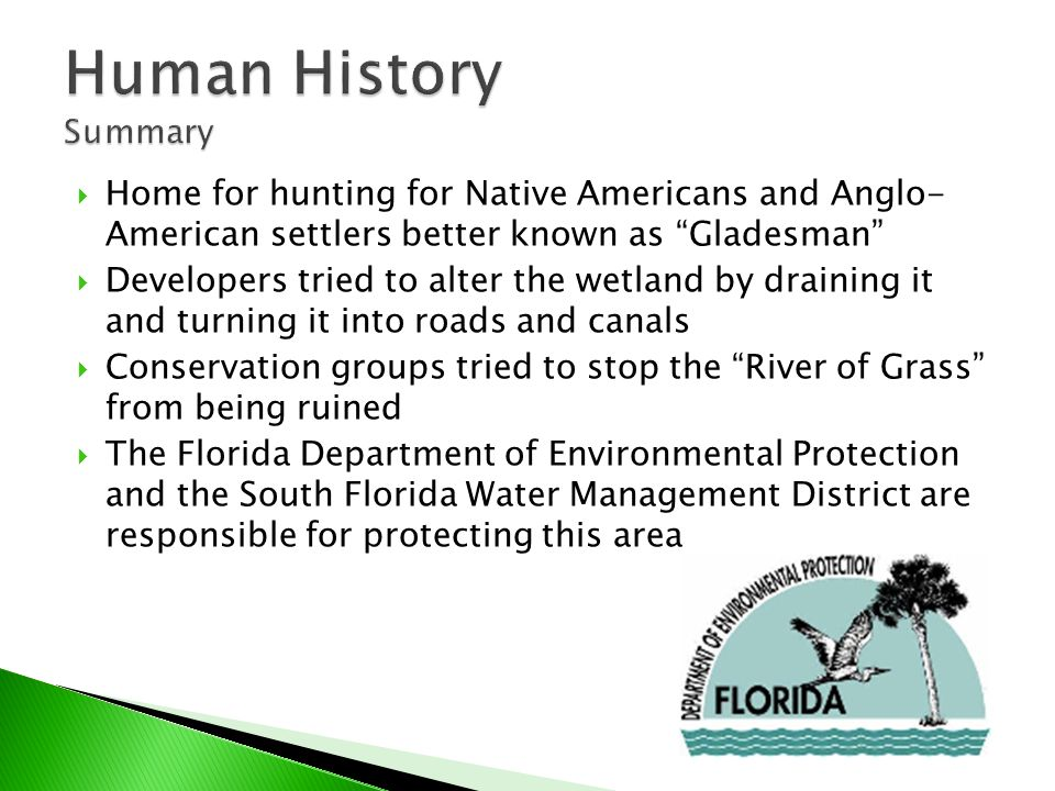  Home for hunting for Native Americans and Anglo- American settlers better known as Gladesman  Developers tried to alter the wetland by draining it and turning it into roads and canals  Conservation groups tried to stop the River of Grass from being ruined  The Florida Department of Environmental Protection and the South Florida Water Management District are responsible for protecting this area