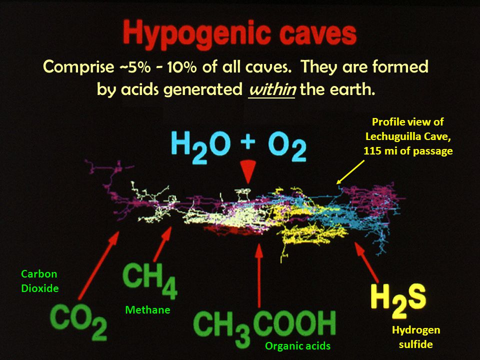 Comprise ~5% - 10% of all caves. They are formed by acids generated within the earth.