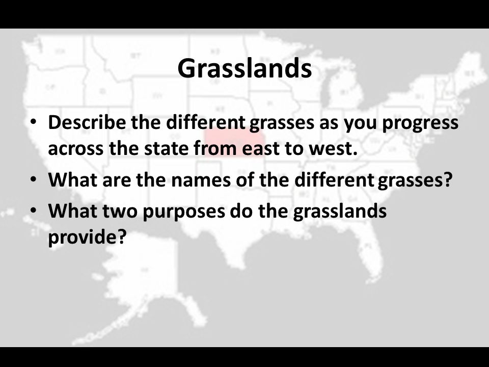 Grasslands Describe the different grasses as you progress across the state from east to west. What are the names of the different grasses? What two pu