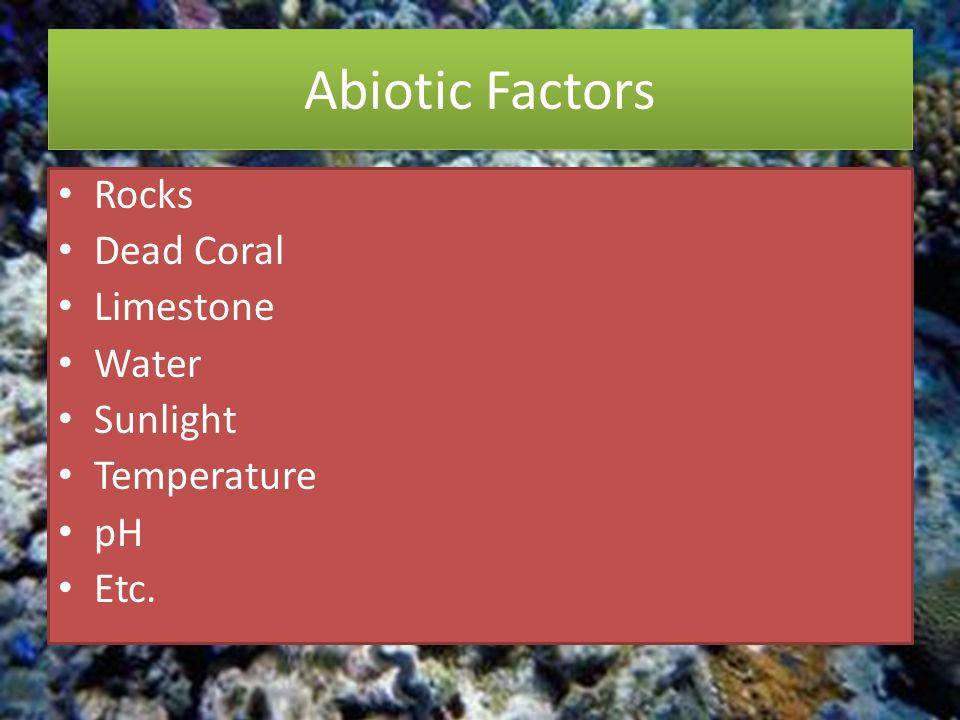 Abiotic Factors Rocks Dead Coral Limestone Water Sunlight Temperature pH Etc.