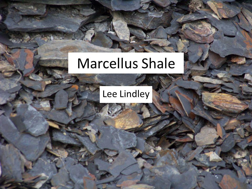 Marcellus Shale Lee Lindley