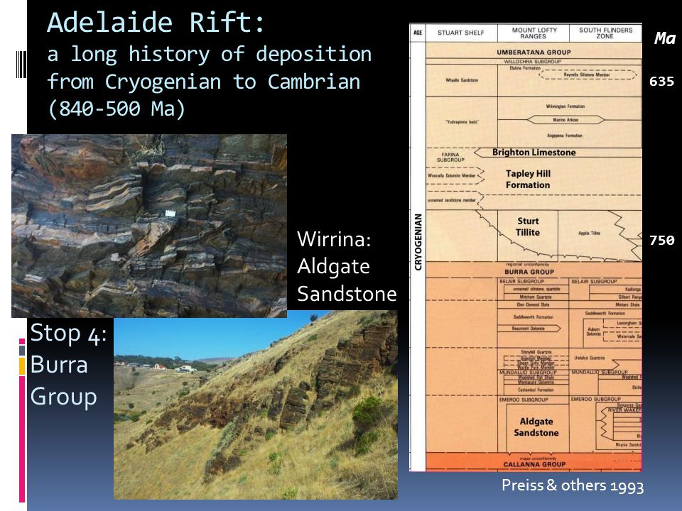 Adelaide Rift: a long history of deposition from Cryogenian to Cambrian (840-500 Ma) 635 750 Ma Preiss & others 1993 Wirrina: Aldgate Sandstone Stop 4